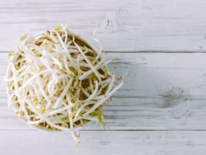 お財布にも優しいもやしダイエットの効果的なやり方とおすすめレシピ3選