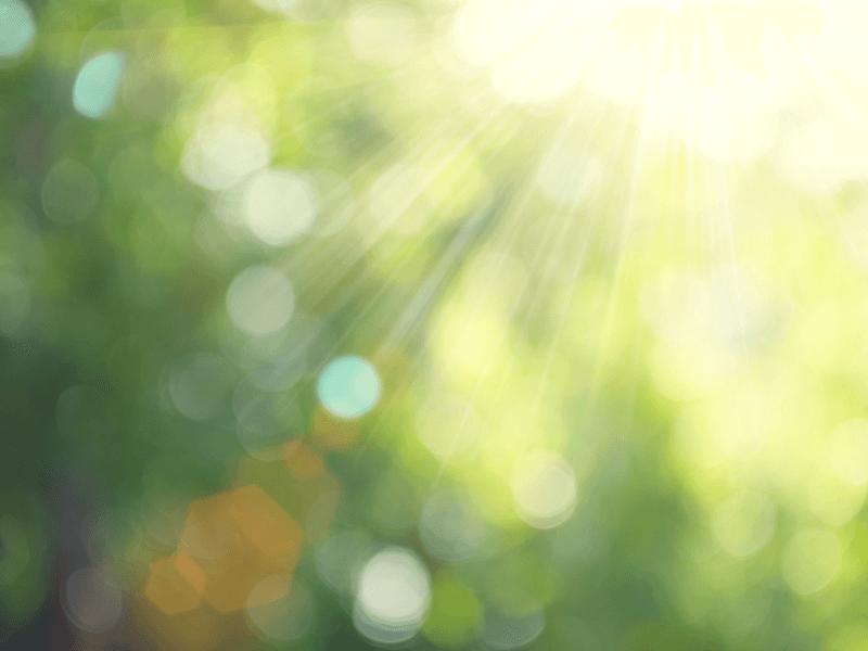 光毒性成分「ソラレン」を含む化粧品や植物に注意!正しい対処法を知ろう