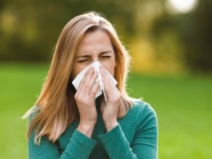 花粉症対策におすすめのアロマオイル6選!